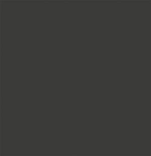 //cdn.optipic.io/site-1933/lv/Серый Матовый.jpg